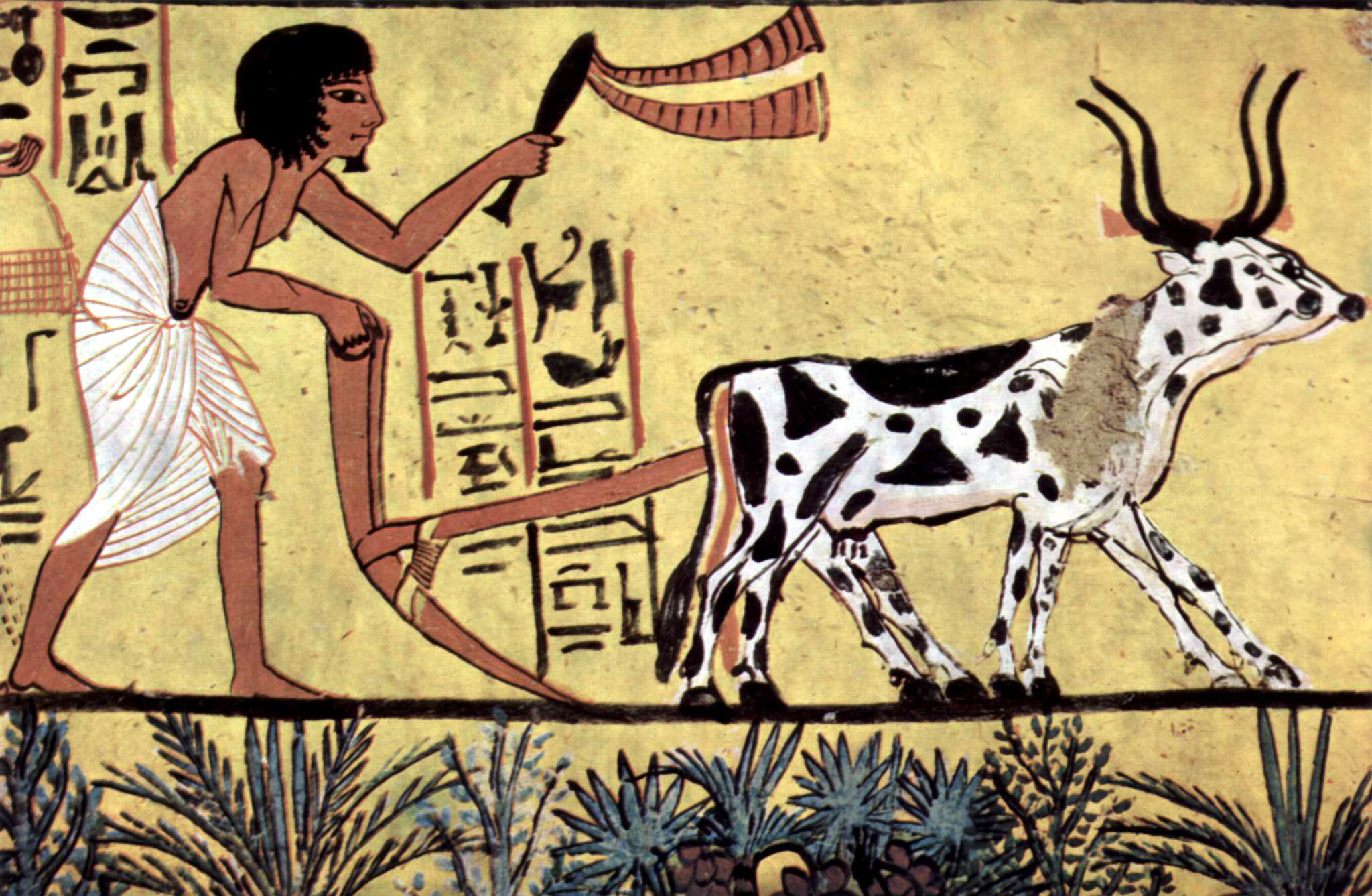 Ploughing with a yoke of horned cattle in Ancient Egypt. Painting from the burial chamber of Sennedjem