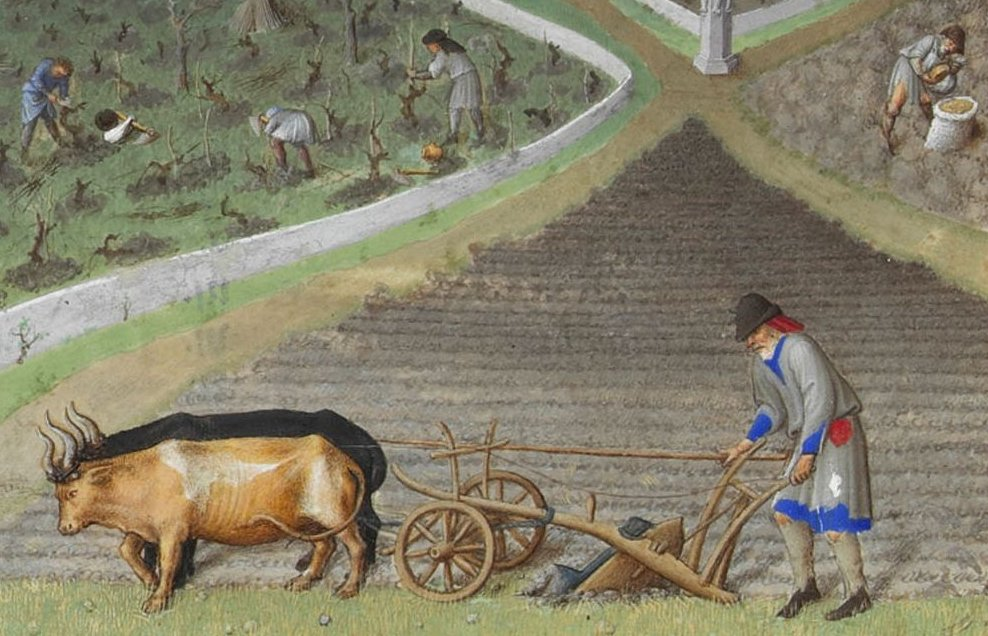 Crucial to the development of early agriculture was the invention of the plough