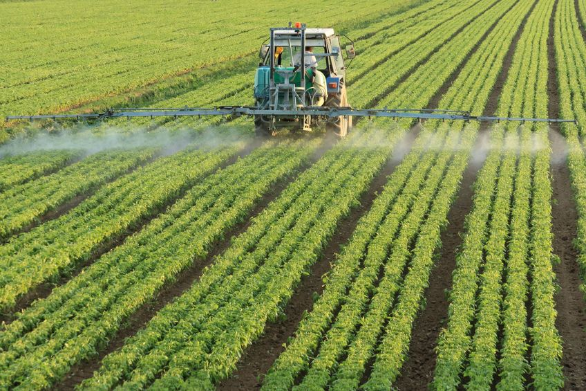 Glyphosate is an active substance widely used in herbicides
