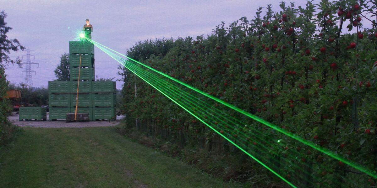 Organic egg farm employs lasers as biosecurity measure