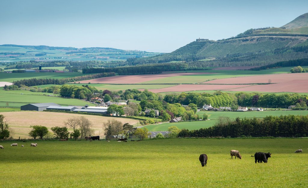 The average price of arable farmland sold in the first quarter of 2017 was £9,800/acre