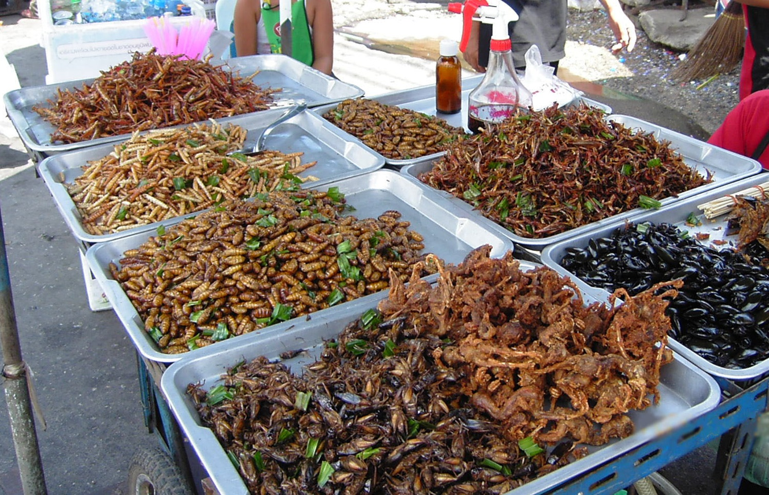 The scientists said that halving consumption of animal products by eating more insects would free up 1680m ha of land