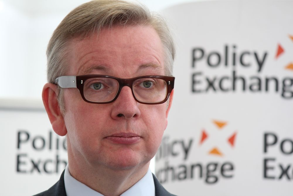 Michael Gove appointed environment secretary in cabinet reshuffle
