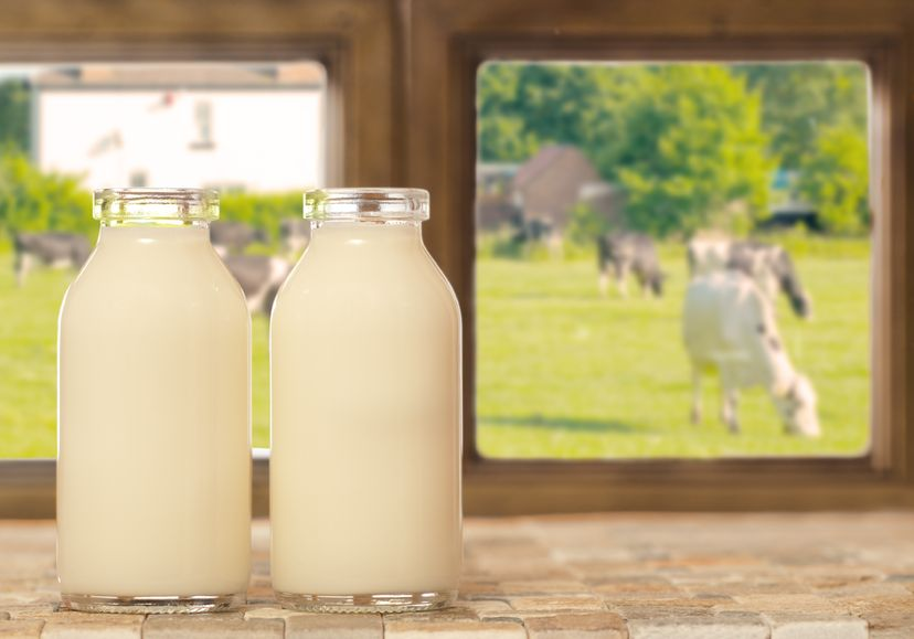 The court said if it is not from an animal, it can't be called milk
