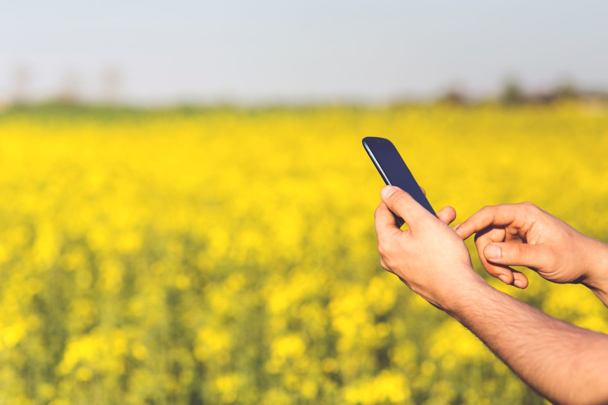 'Agrimetrics' data can support farmers and boost food production