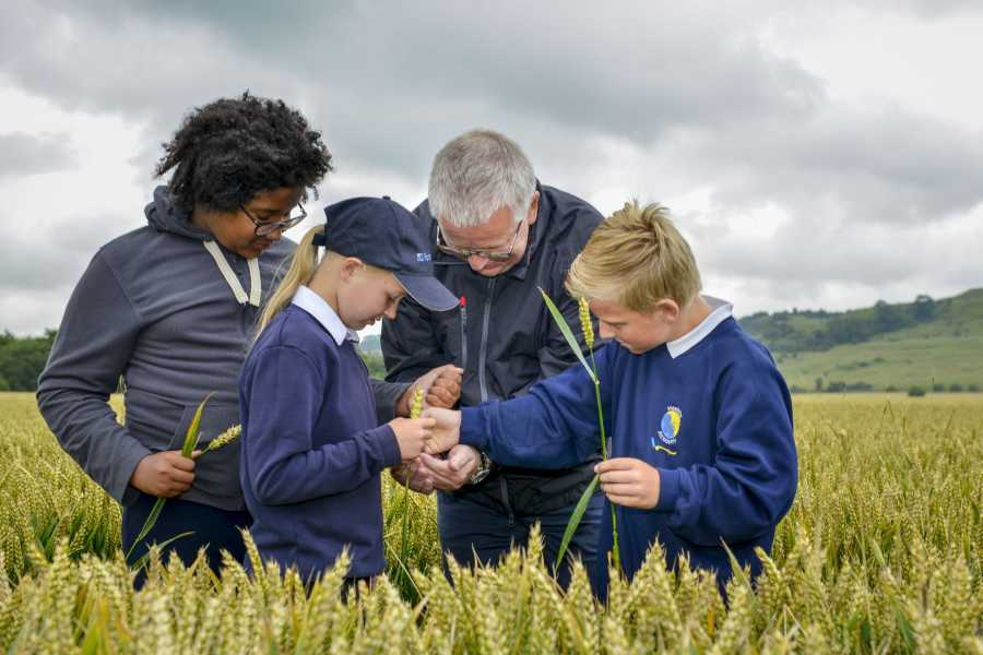 School children get hands on with nature during Warburtons farm visit