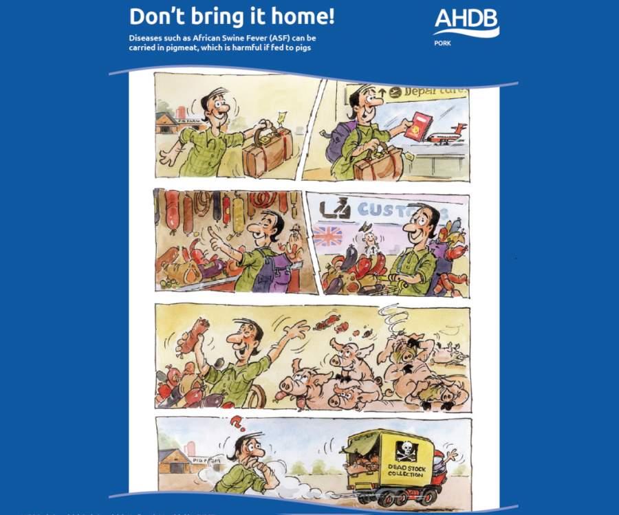 AHDB Pork warns of ASF risk in new materials