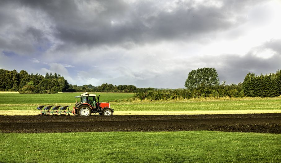 The report shows that despite costing billions, just 5 percent of the EU's farmland benefited from the scheme