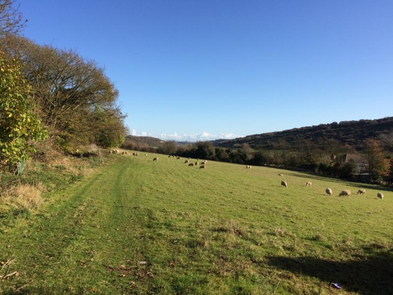 Farthingloe Valley, within the Kent Downs AONB (Photo: CPRE)