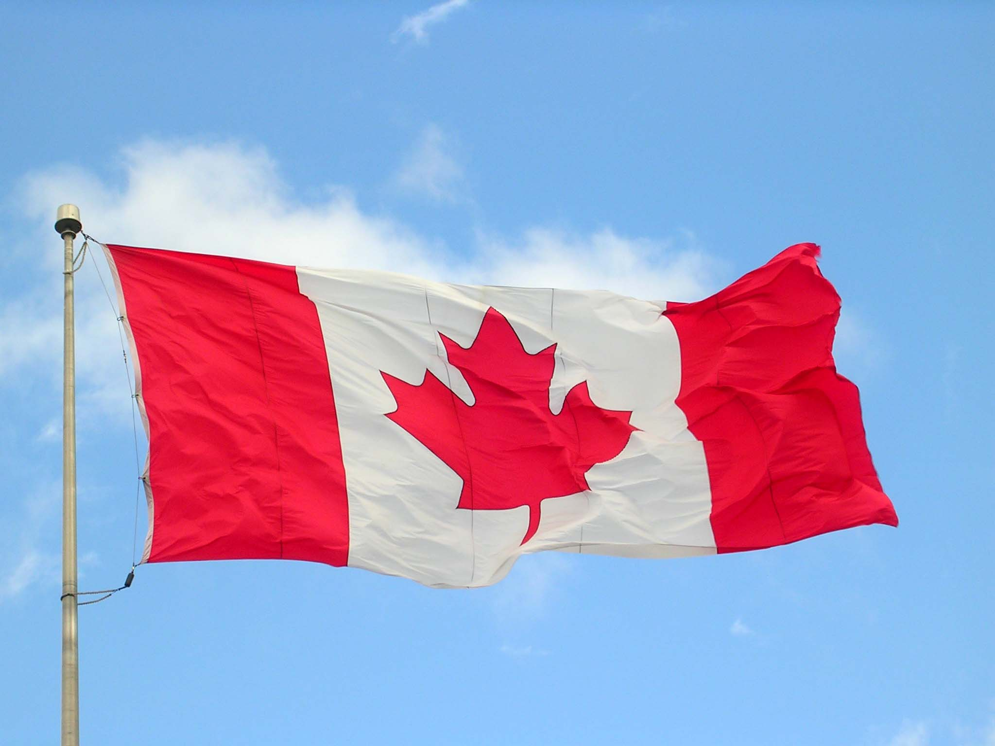 Approval has been given for the export of British manufacturing beef to Canada
