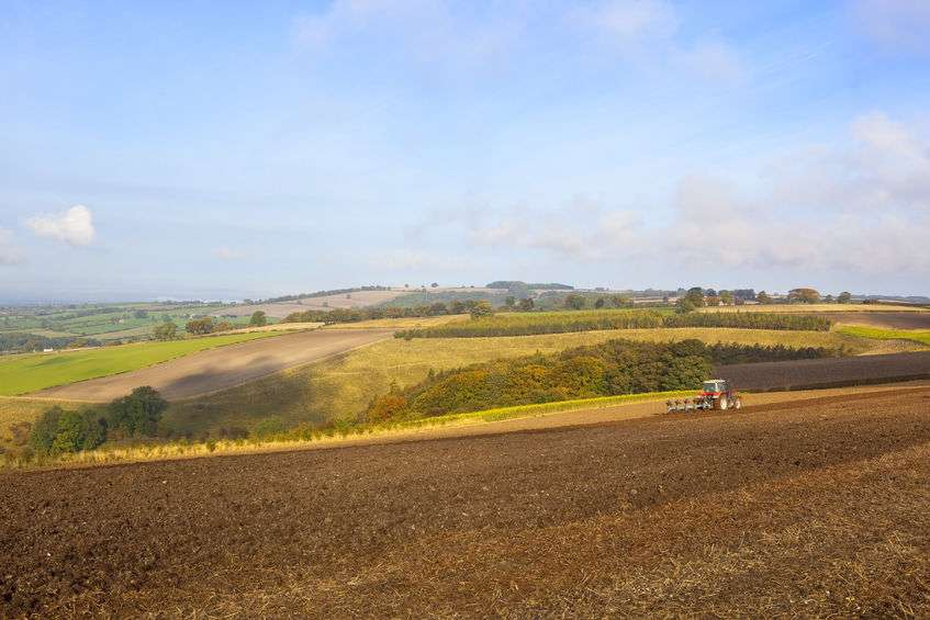 Scottish government has been urged to drive towards carbon-neutral farming