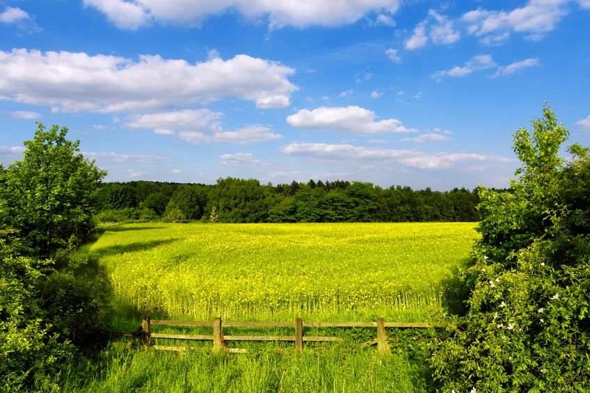 Farming systems that work with nature can be profitable and productive, the report said