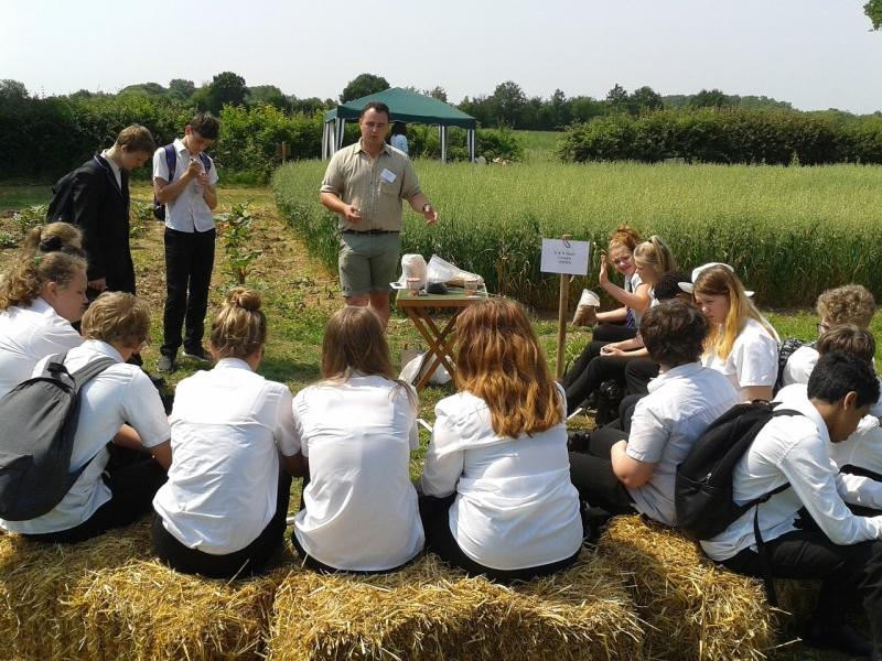 Open Farm School Days provides an opportunity for children and young people to experience farming at first hand