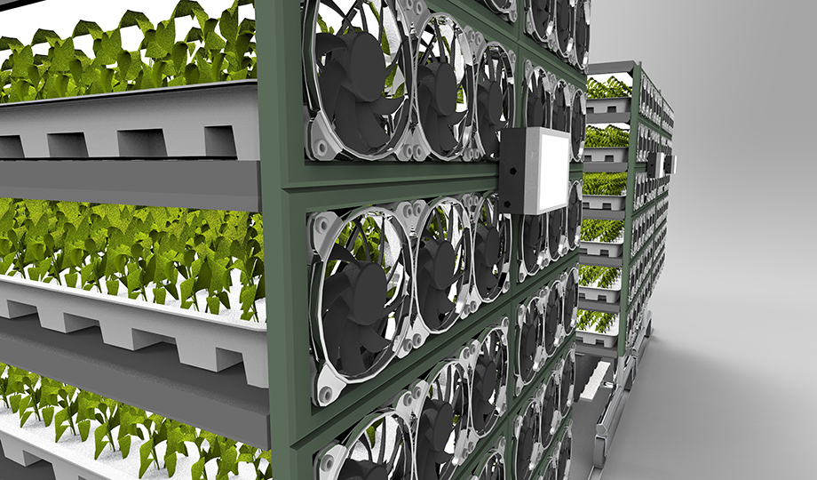 Where current vertical farms use traditional LEDs, vFarm uses OLEDs, which produce less heat and have a higher energy efficiency