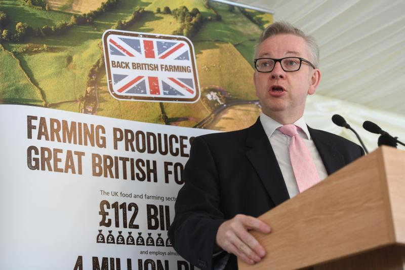 British farmers are 'better equipped than anyone' to deliver high quality food, Defra Secretary Michael Gove said