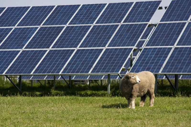 The NFU estimates farmers are responsible for 9GW out of 13GW of solar capacity