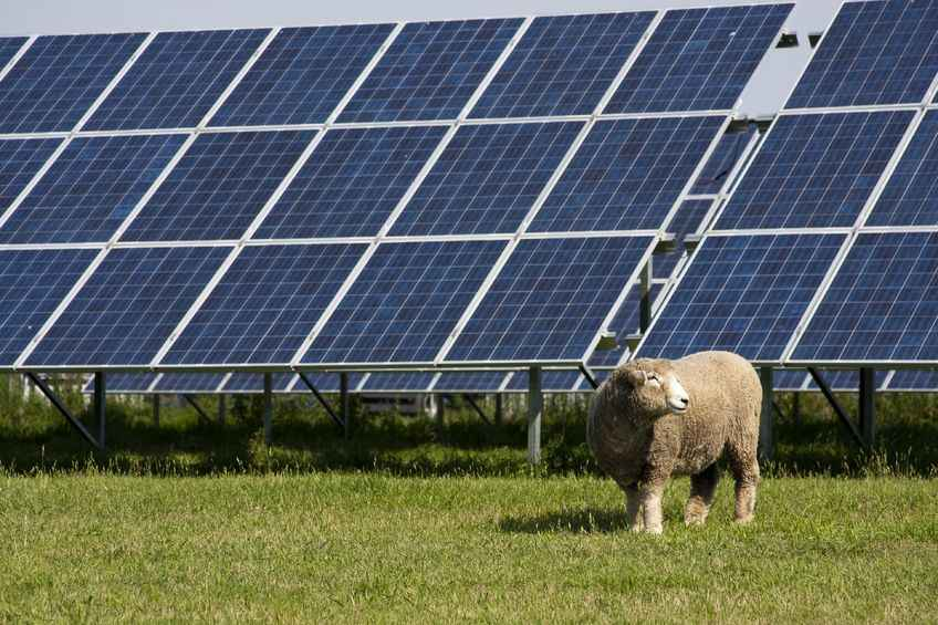 Sustainable energy projects can provide important revenue streams for farms