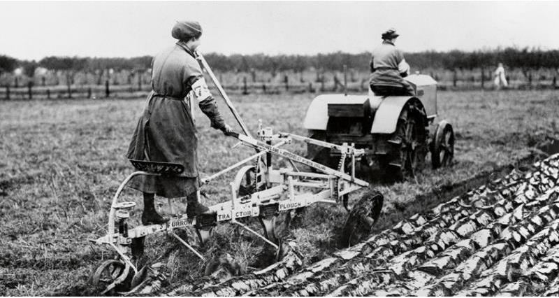 12,000 members of the Women's Land Army and 148,000 women helped to tend the countryside to produce food to sustain the war effort