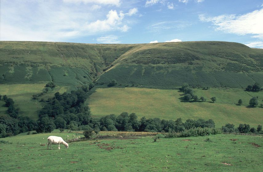 Upland landscapes are fragile environments where farming is extremely marginal, MP Helen Goodman said