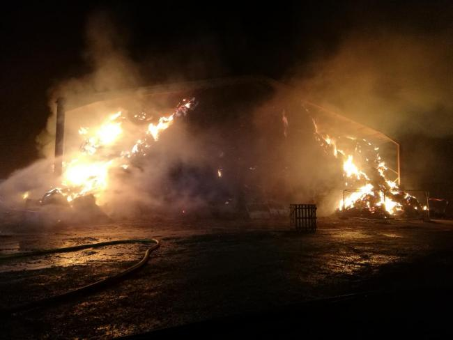Head of Farming at James Dyson's agricultural business called the incident 'mindless vandalism' (Photo: TVPSouth Oxon & VOWH/Twitter)