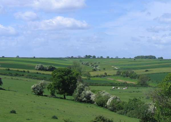 The 1,900 acre estate has been advertised by estate agents at an asking price of £7 million (Photo: Laxton)
