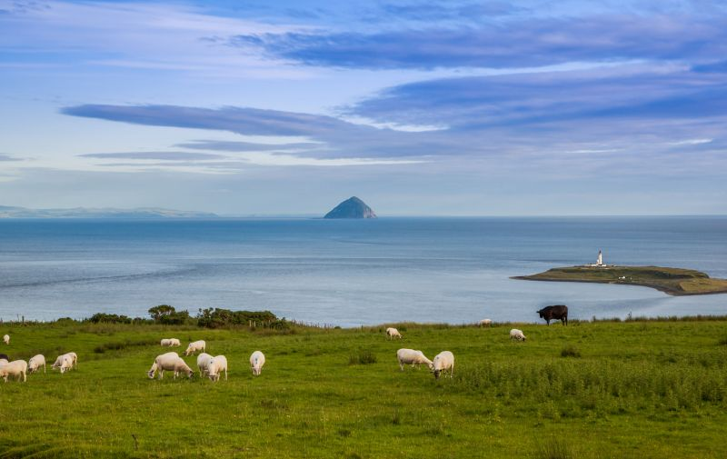 A 'coherent' agriculture and land use strategy is required, the Scottish Land & Estates group says