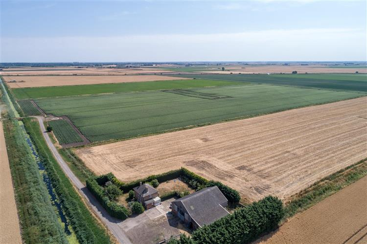 One of the farms up for grabs is Fen Farm, located in Hilgay (Photo: Joe Casey Photography)