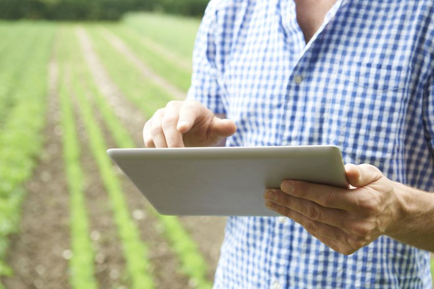 In the next five years, farmers will be able to detect dangerous contaminants in their food using AI