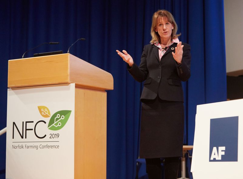 Minette Batters – President of the NFU – warned that a no-deal Brexit would undermine British production to a catastrophic level
