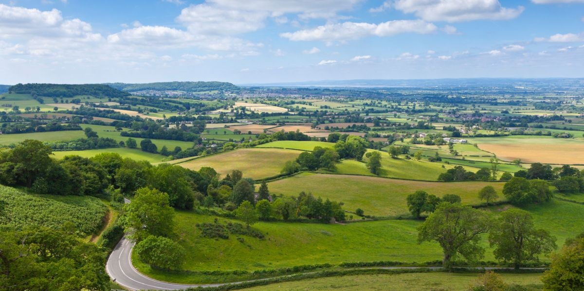 The scheme is only aimed at the restoration of hedges and stone walls