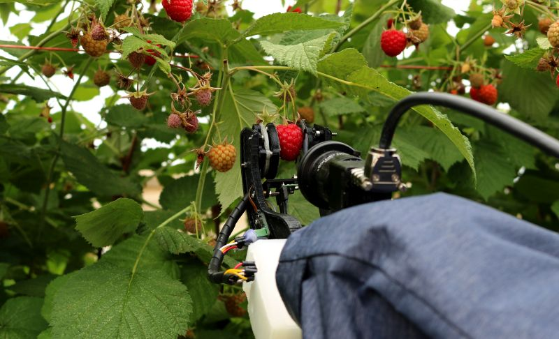 A strawberry harvester at Plymouth University highlights the sector's move towards robotics