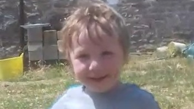 Efan Lloyd Williams was killed after he fell from the rear door of his dad's Land Rover while it was reversing (Photo: Dyfed Powys Police)