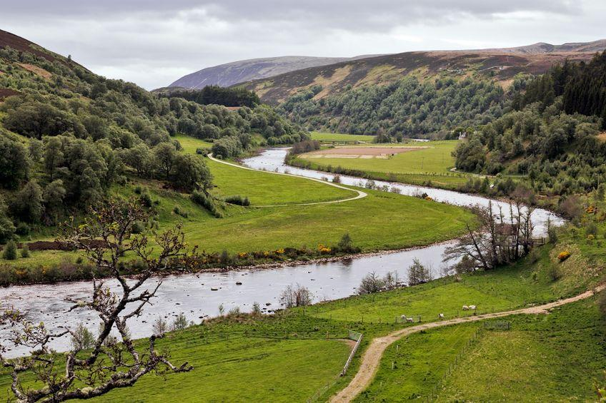 The report says that natural capital should be the basis of farm lending