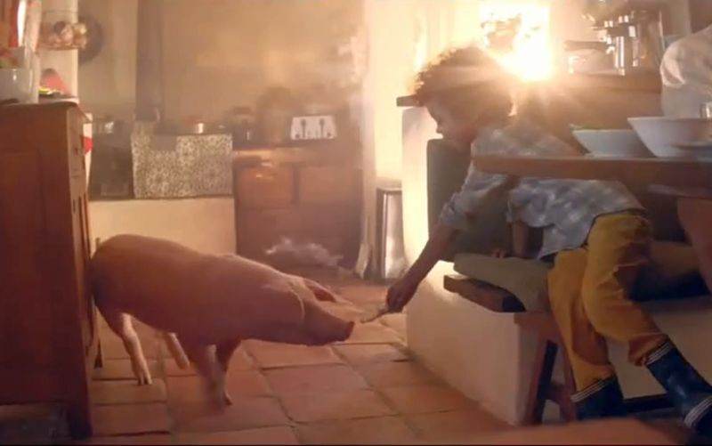 The pig sector has concerns that Amazon's advert encourages 'swill feeding', which has been banned in the UK since 2001