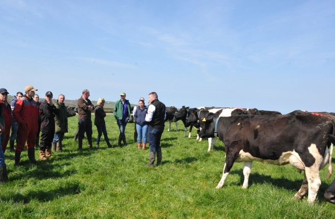 There is a 'very strong link' between grass utilisation and profit, farmers heard