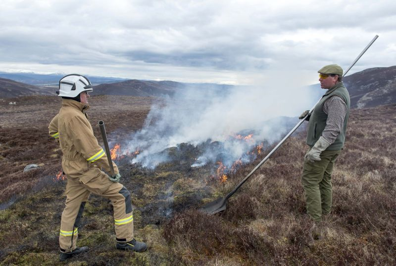 No wildfires have been reported on Scottish grouse moors as muirburn season closes