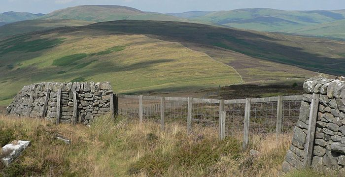 Alongside Langholm Moor, much of the area is currently part of the estate's farming operation (Photo: GCWT)