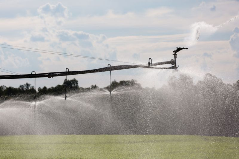 Farmers in East Anglia, Lincolnshire and Northamptonshire have reported they are facing significant pressures with irrigation