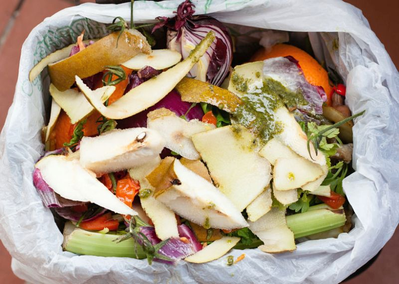 10.2 million tonnes of food is wasted annually after leaving the farm gate, worth around £20bn