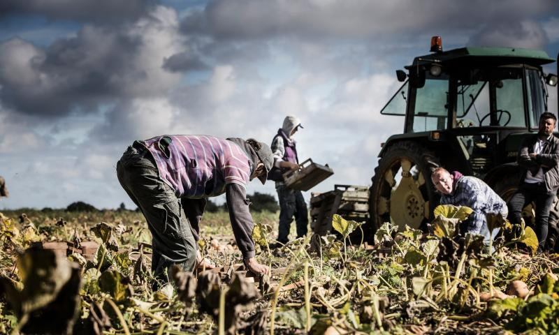 The farm workers were given as little as £20 per week by the traffickers (Photo: Stock photo/National Crime Agency)