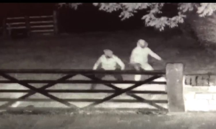 Three men entered the farm in the middle of the night (Photo: Steve Walker/Facebook)