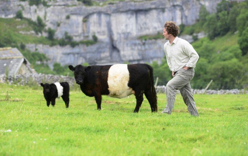 Dales farmer Neil Heseltine embraces sustainable ways of farming to enhance his landscape
