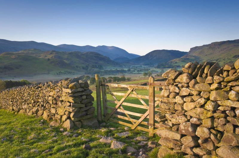The Tenant Farmers Association (TFA) said tenants must not feel pressured to settle rents at unsustainable levels