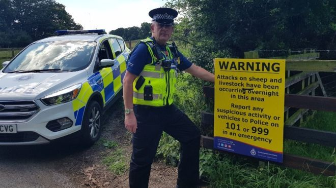 The county has experienced a spate of illegal butchery incidents in the past few months (Photo: Northamptonshire Police)