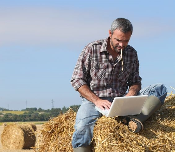 Farm manager training could bridge productivity gap, AHDB Says