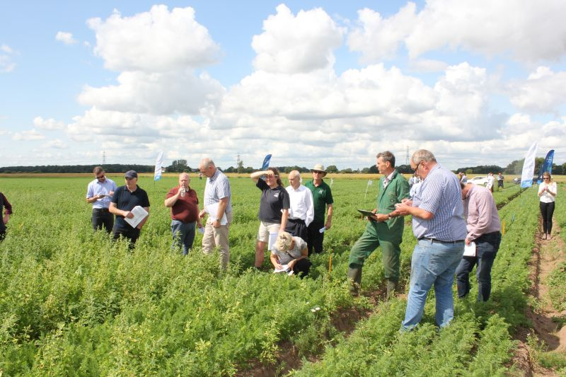 The demonstration trials and events will look at the whole crop management