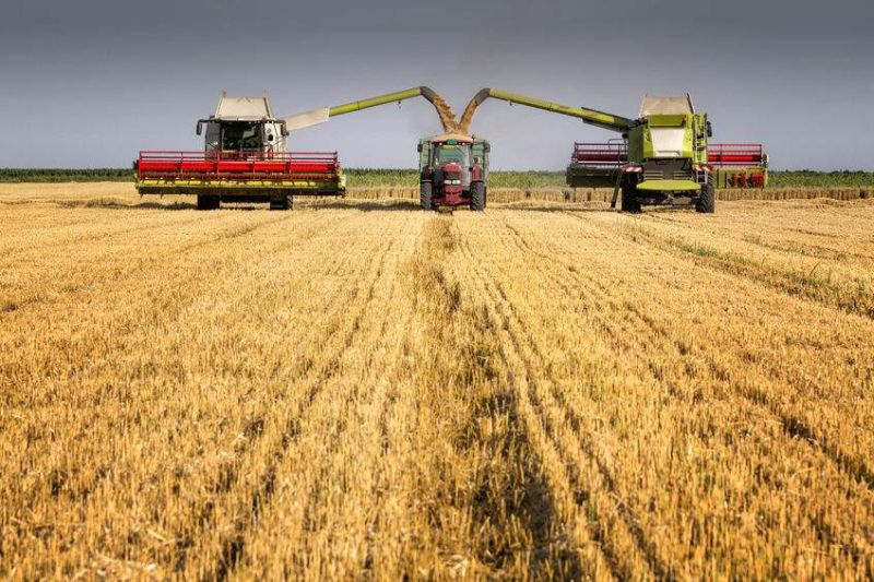 The survey traditionally provides the first insight into this year's harvest