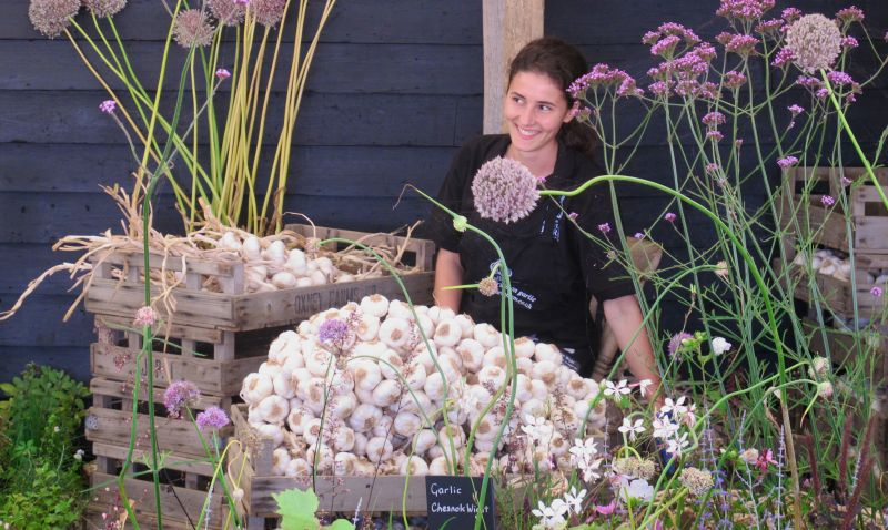 The global garlic market is expected to reach $20,216 million by the end of 2023,
