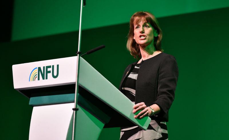 NFU president Minette Batters said a trade commission would be 'fundamental' in ensuring food and farming is upheld
