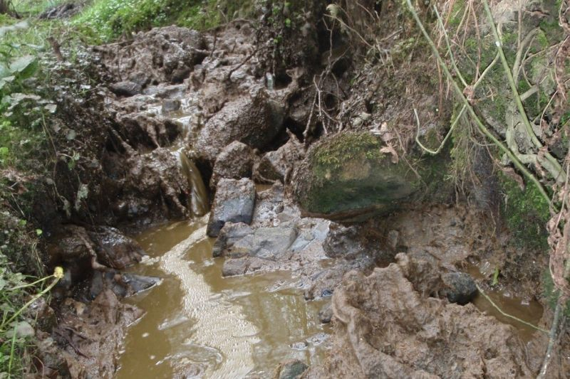 The Hodder was discoloured and smelled of slurry for several kilometres, Environment Agency officers said